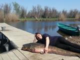 Рыбалка, подводн. охота. раскаты Каспия